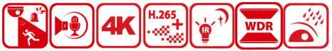 DS-2CD2386G2-ISU/SL
