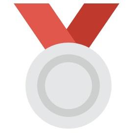 Silver V-IP
