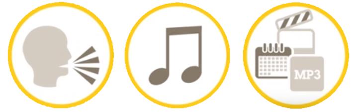 C2005 Icon